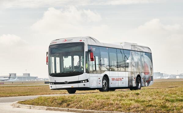 30辆比亚迪电动客车投运比利时机场